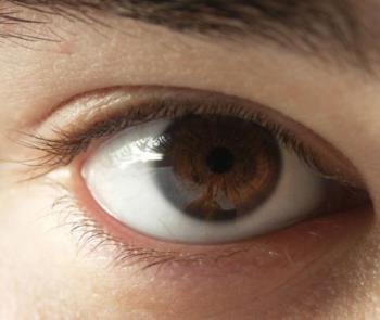 Eye - Dark Brown Eye