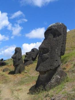"""Moai Rano raraku - Moai are statues carved from compressed volcanic ash on Rapa Nui, Chile (Easter Island). The statues are all monolithic, that is, carved in one piece. The largest moai erected, """"Paro"""", was almost 10 metres (33 feet) high and weighed 75 tonnes (74 Imperial tons, 83 American tons).[1] One unfinished sculpture has been found that would have been 21 metres (69 ft) tall and would have weighed about 270 tons.  Fewer than one-fifth of the statues that were moved to ceremonial sites and then erected once they had red stone cylinders (pukau) placed on their heads. These """"topknots"""", as they are often called, were carved in a single quarry known as Puna Pau. About 95% of the 887 moai known to date were carved out of compressed volcanic ash at Rano Raraku, where 394 moai still remain visible today. Recent GPS mapping in the interior may add additional moai to that count. The quarries in Rano Raraku appear to have been abandoned abruptly, with many incomplete statues still in situ. However, the pattern of work is very complex and is still being studied. Practically all of the completed moai that were moved from Rano Raraku and erected upright on ceremonial platforms were subsequently toppled by native islanders in the period after construction ceased. Maps of Easter Island showing locations of Moai Enlarge Maps of Easter Island showing locations of Moai A close up of the moai at Ahu Tahai, restored with coral eyes by the American archaeologist William Mulloy Enlarge A close up of the moai at Ahu Tahai, restored with coral eyes by the American archaeologist William Mulloy  Although usually identified as """"heads"""" only, the moai are actually heads and truncated torsos.  In recent years, toppled moai have been found untouched and face-down. This led to the discovery that the famous deep eye sockets of the moai were designed to hold coral eyes. Replica eyes have been constructed and placed in some statues for photographs.  The most widely accepted theory is that the"""