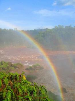 rainbow - rainbow