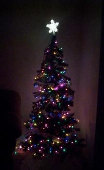 My Christmas Tree - My beautiful christmas tree!