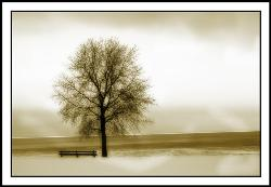 lonliness - this image has deep meanings inside it. the only thing it need an eye to view and understand its meanings that reflects the peaks of lonliness