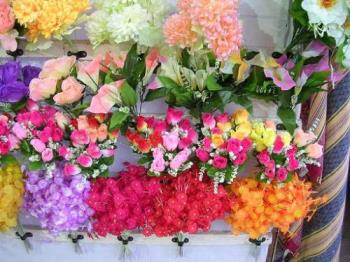 flowers - Photographed at Mysore floral show