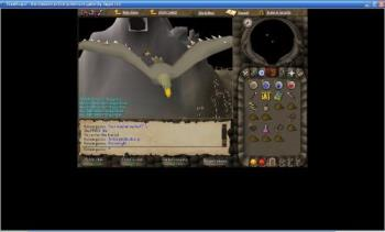 My RuneScape character - a photo of my runescape character flying on an eagle.
