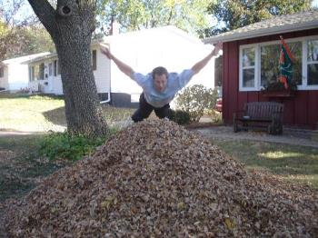 Jumping in Leaves - Jumping In Leaves