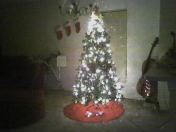 My Christmas Tree - My Christmas Tree