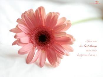 love wallpeper - flower