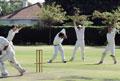 Cricket - Cricket