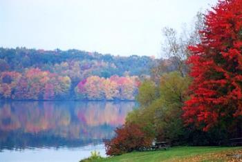 Autumn - Beautiful autumn-coloured trees, surrounding a still lake.