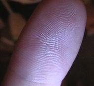 Fingerprint - Is this your finger print?