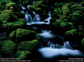 National Geographic Wallpapers - National Geographic Wallpapers