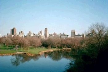 Central Park, New York City - This is a view of Central Park with buildings in the background. It was taken in December of 1999.