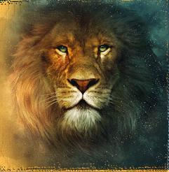 Aslan - Here is a pic of Aslan from Narnia.