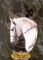 horse - painting