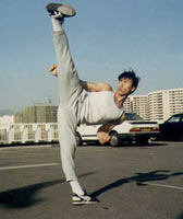 Donnie yen - Donny yen kicks high