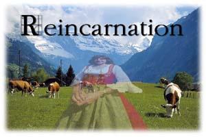 Reincarnation - reincarnation