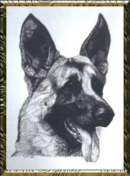 a german shepherd - we have 2 and the kids love them...