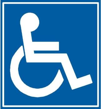 Handicapped - not always visible