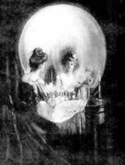 Vanity - Vanity or Skull