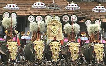 Elephants in Thrissur Pooram festival India. - Elephants in Thrissur Pooram festival India.