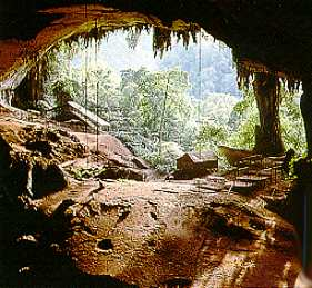 Niah Cave - Niah Cave in Sarawak,Malaysia