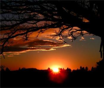 Sunrise - Sunrise