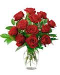 Rose - r............