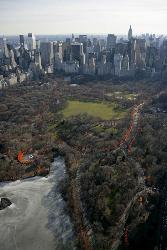 Central Park - Central Park in New York City.