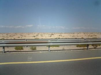a desert at the outskirts of abu dhabi - This is a typical desert found at the outskirts of abu dhabi, uae. Unlike other deserts that is only made up of sand dunes, this one have few small grasses and bushes growing on it.