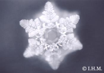 """NAMASTE-WaterCrystal - In chemistry and mineralogy, a crystal is a solid in which the constituent atoms, molecules, or ions are packed in a regularly ordered, repeating pattern extending in all three spatial dimensions.  Crystal originates from the Greek word """"Krystallos"""" meaning clear ice, and once referred particularly to quartz, rock crystal.  Generally, crystals form when they undergo a process of solidification. Under ideal conditions, the result may be a single crystal, where all of the atoms in the solid fit into the same crystal structure. However, generally, many crystals form simultaneously during solidification, leading to a polycrystalline solid. For example, most metals encountered in everyday life are polycrystals. Crystals are often symmetrically intergrown to form crystal twins.  Which crystal structure the fluid will form depends on the chemistry of the fluid, the conditions under which it is being solidified, and also on the ambient pressure. The process of forming a crystalline structure is often referred to as crystallization."""