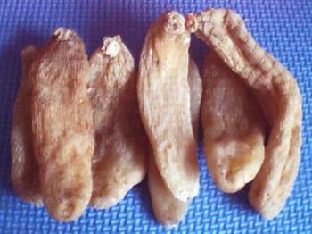 gastrodia tuber: tianma: good for ladies' health,  - gastrodia tuber: tianma: Chinese hurb good for ladies' health, and to cure headache