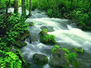 nature - my love......