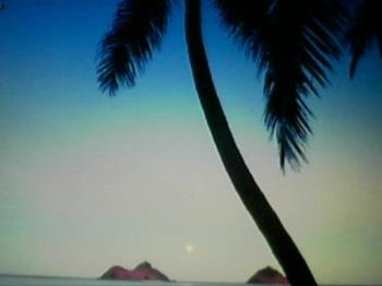Hawaii - Hawaii is the most beautiful state.  Everyone should visit this state if you can afford it or have the time.