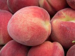 white peaches are very good. - the best taste white peaches