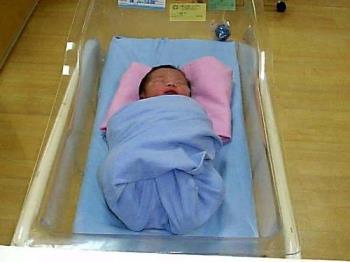 baby - newborn baby