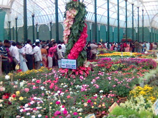 how is this image - flower show in lal bagh bangalore