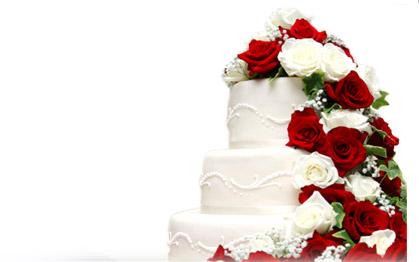 cake - a beautfiul cake