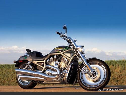 Harley Davidson - This is a Harley Davidson beauty.