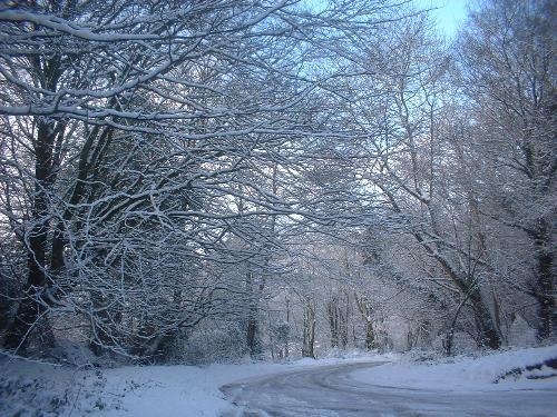 SNOW - It is toooooo cold