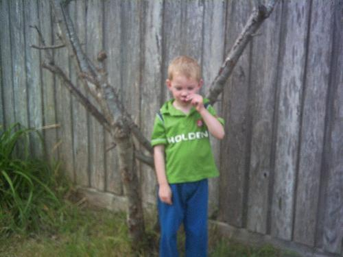 my son - My son aged four!