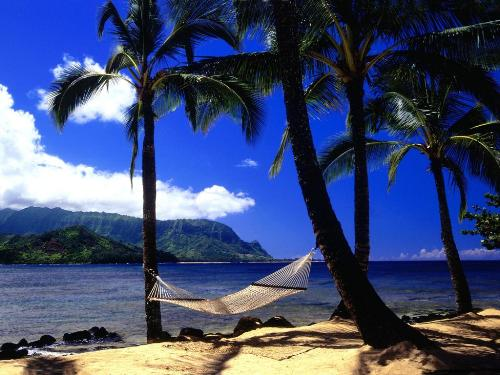 Afternoon Nap, Kauai, Hawaii - 1600x1200 - ID 43 - Destination - Afternoon Nap, Kauai, Hawaii - 1600x1200 - ID 43............ Best locations from around the world ... Truly an adventurer's paradise...High Resolution Photography