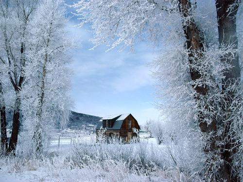 colorado winter - Beautiful picture of the Colorado Winter.