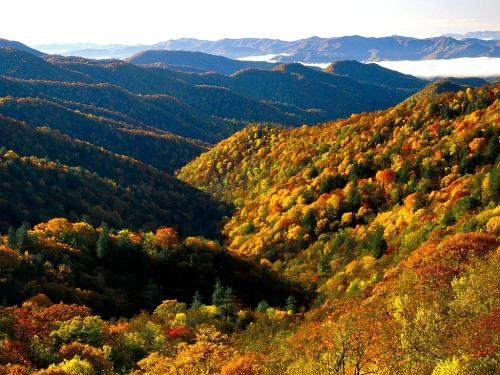 Deep Creek Valley, Great Smoky Mountains Nationa - Destination - Deep Creek Valley, Great Smoky Mountains Nationa............ Best locations from around the world ... Truly an adventurer's paradise...High Resolution Photography