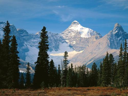 Mount Athabasca, Jasper National Park, Alberta - - Destination - Mount Athabasca, Jasper National Park, Alberta -............ Best locations from around the world ... Truly an adventurer's paradise...High Resolution Photography