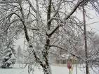 Snow storm - snow