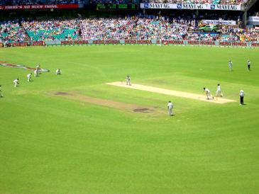 cricket field - cricket field