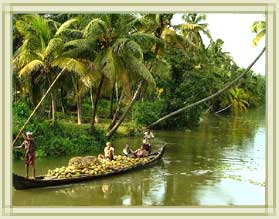 Kerala - The place is dotted with serene beaches, swaying palms, golden sands, shimmering backwaters and everuthing that you could possibly wish for. It's even been rated as one of the 50 must visit destinations on the planet. Does this sound like an magnification, then discover it yourself with a trip to Kerala.