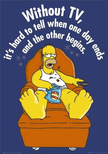 homer and his tv! xD - homer and his tv! xD