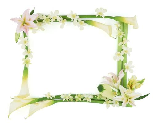 Photo Frame - see how can you fill the colors of your life into this blank photo frame ?