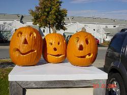 pumpkins - Our Pumkins