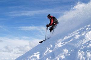 ski - ski